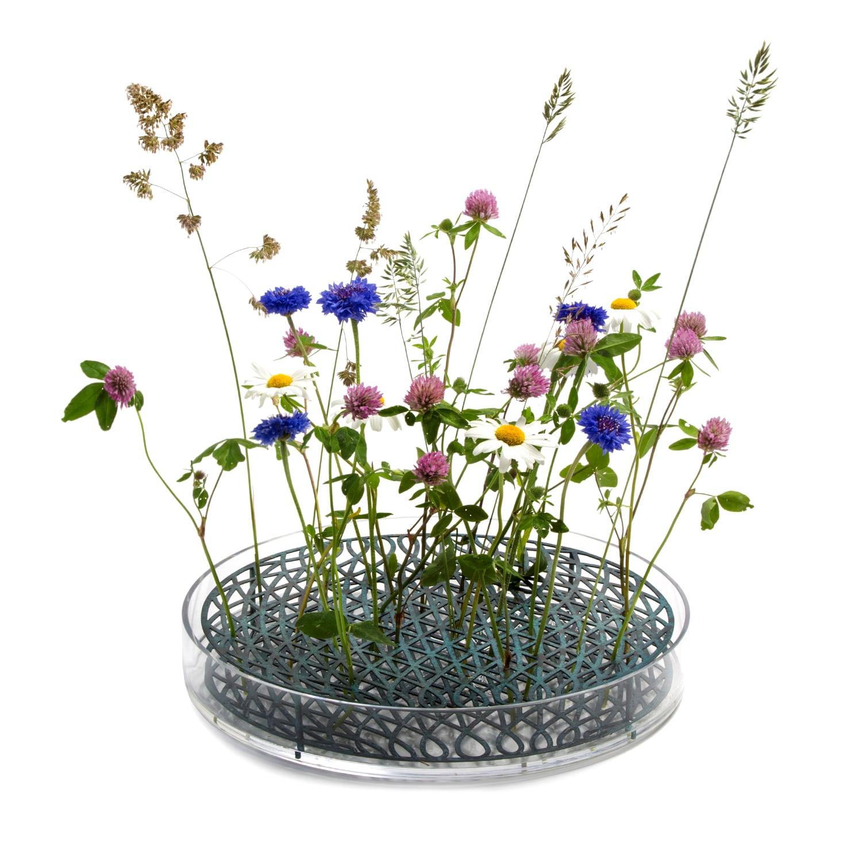 Äng Mega Bluegreen Flowers Square